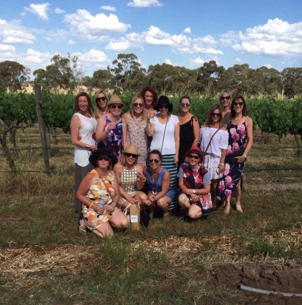Wines in the Vines – November 2017 Featured Image