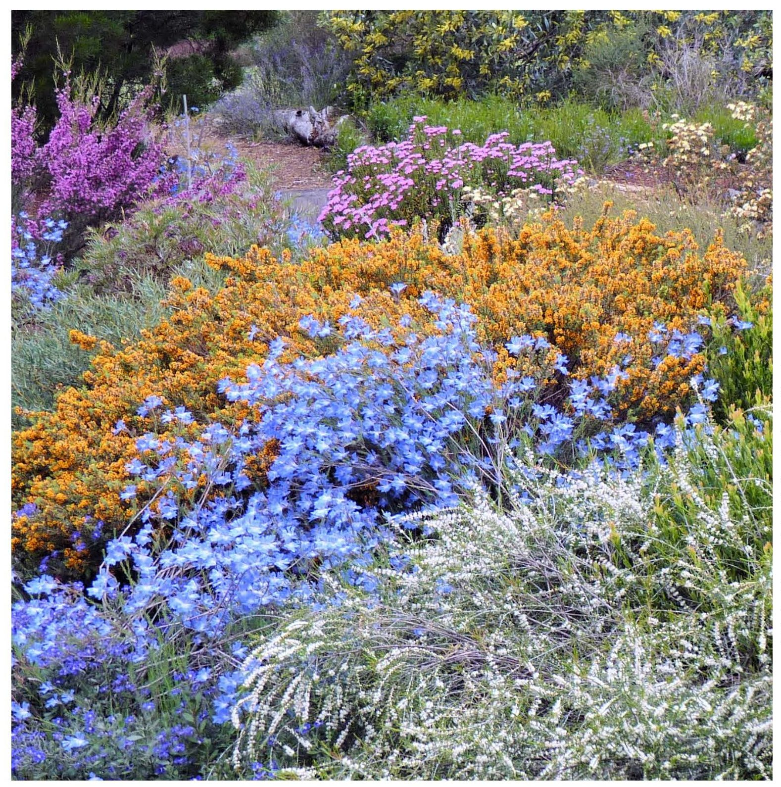 SAVE THE DATE: Wartook Gardens Open Day Featured Image